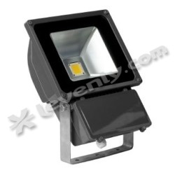 Acheter PHARE LED 80W / BLANC CHAUD, PROJECTEUR ARCHITECTURAL LUMIHOME