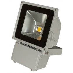 Acheter LDP-FLOOD80-WW, PROJECTEUR LED BRITEQ