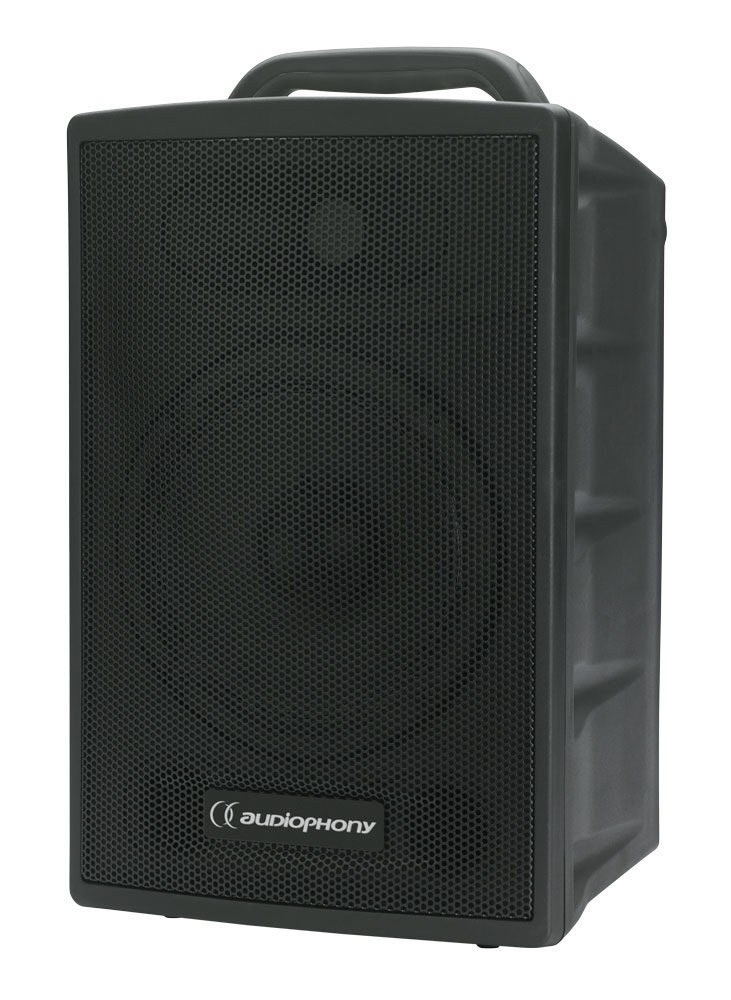audiophony passrun enceinte passive 100w pour sono portable. Black Bedroom Furniture Sets. Home Design Ideas